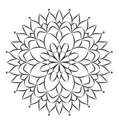 black and white circular round floral mandala vector image