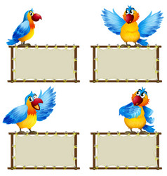 board template with cute parrot on white vector image