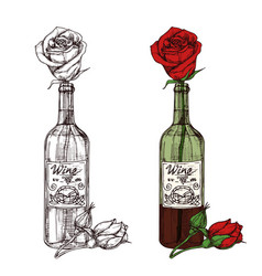 hand drawn sketched rose in wine bottle vector image