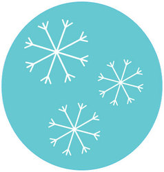 Snowflake icon label vector image