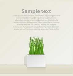 square pot with grass against the wall vector image