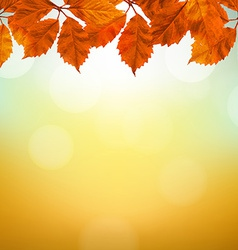 Vintage autumn background with leaves vector