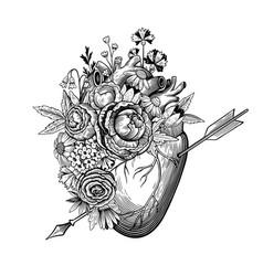 Vintage heart pierced an arrow vector