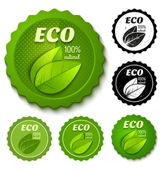 eco banner retro vector image