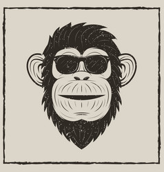 monkey in sunglasses grunge t-shirt vector image