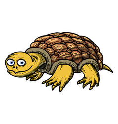 Cartoon image of turtle vector