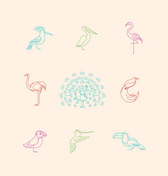 different birds icons set vector image