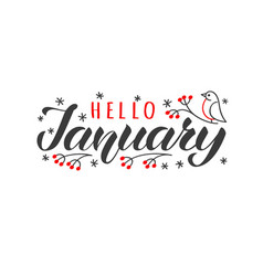hello january hand drawn lettering card vector image