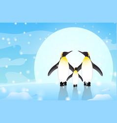 Penguin character design animal eps10 vector