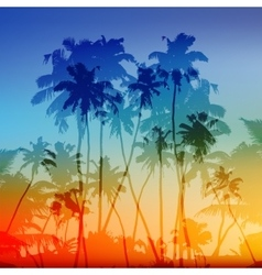 palms silhouettes tropical sunset vector image vector image