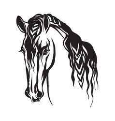 Abstract contour portrait line black horse vector