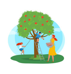 Apple tree woman picking fruits kid playing vector