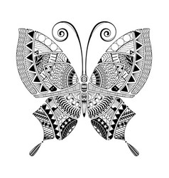 Butterfly coloring book style vector
