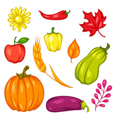 harvest set fruits and vegetables vector image