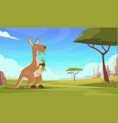 kangaroo background cartoon australian landscape vector image