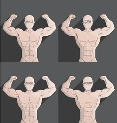 Male muscle grey gym health fitness symbol vector
