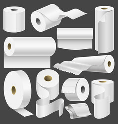 realistic toilet paper roll and kitchen towel vector image