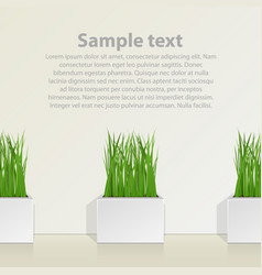 Square pot with grass against the wall vector