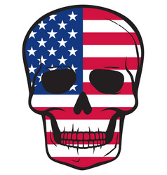 united states flag skull american design vector image