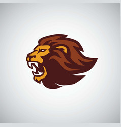 wild lion roaring head icon design vector image