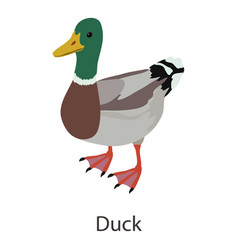 duck icon isometric style vector image