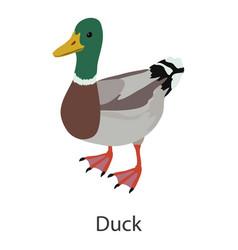 Duck icon isometric style vector
