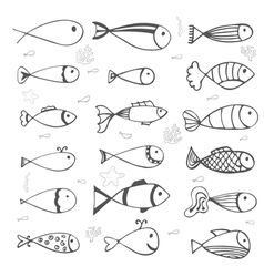 Fish collection on white background Hand drawn vector image
