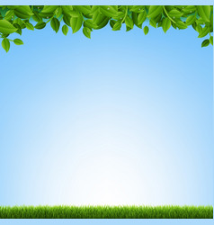 green grass and leaves border vector image