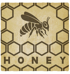 honey bee on honeycomb vintage background vector image