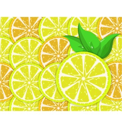 orange and lemon slices vector image
