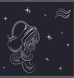zodiac aquarius is the starry sky vector image