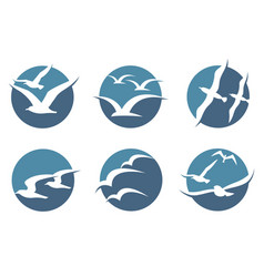 seagull icon set vector image