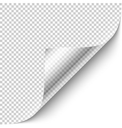 curled corner with shadow on transparent vector image vector image