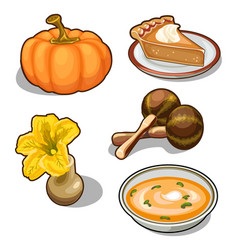 pumpkin set five elements on white background vector image vector image