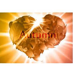 Autumn leaf heart eps10 vector