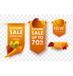 autumn sale tags vector image