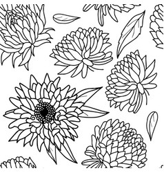 black and white aster flower seamless pattern vector image