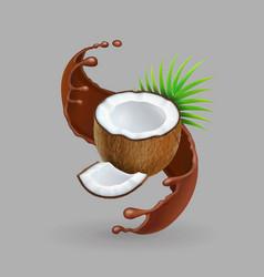 Coconut in chokolate splash realistic vector