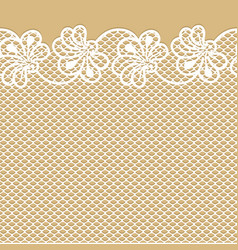 Flower lace border on beige background vector