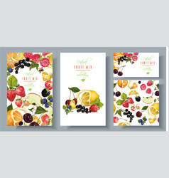 fruit and berry banners set vector image