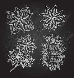 Hand drawn poinsettia flowers set vector