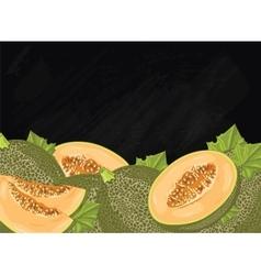 Melon fruit composition on chalkboard vector