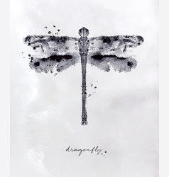 Monotype dragonfly black vector