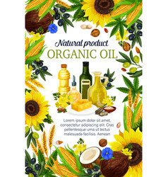 Oils of plants and herbs or fruits and nuts poster vector