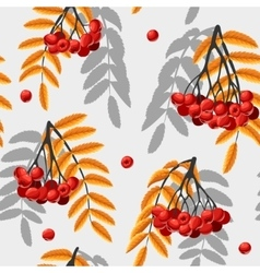 Seamless rowan berries and leaves vector