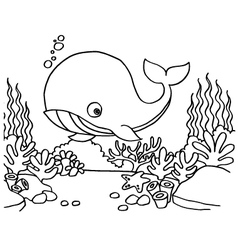 Whales Coloring Pages vector image