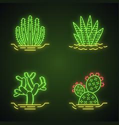 Wild cacti in ground neon light icons set vector