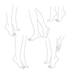 Womans legs female bare feet set vector image