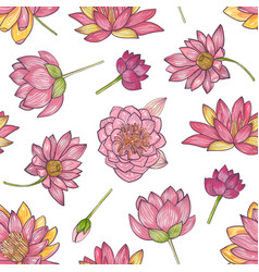floral seamless pattern with gorgeous pink vector image vector image
