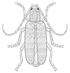 Adult coloring bookpage a cute bug image for vector